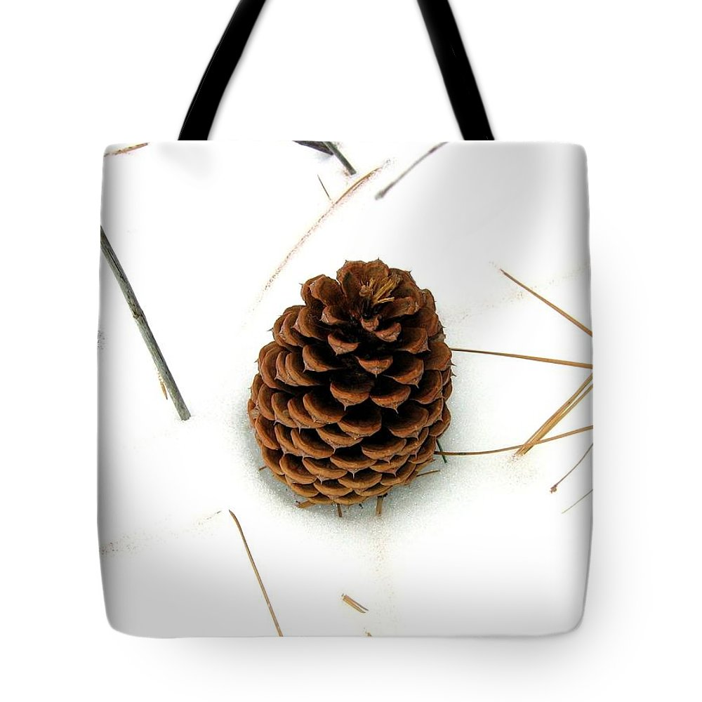 Pine Cone Tote Bag featuring the photograph Lone Cone by Will Borden