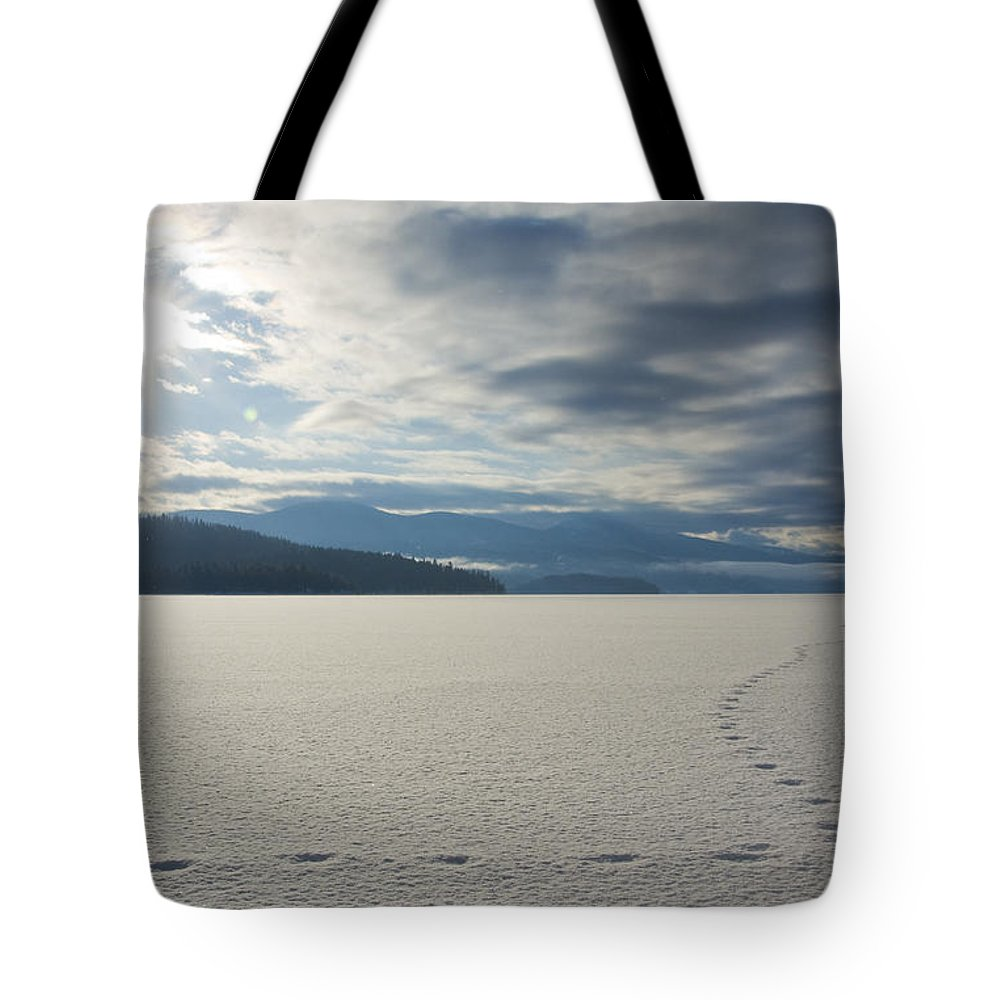 Prints Tote Bag featuring the photograph Lone Coyote by Idaho Scenic Images Linda Lantzy