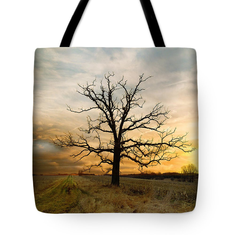 Marsh Tote Bag featuring the photograph Lone Oak On The Marsh by Jayne Gulbrand