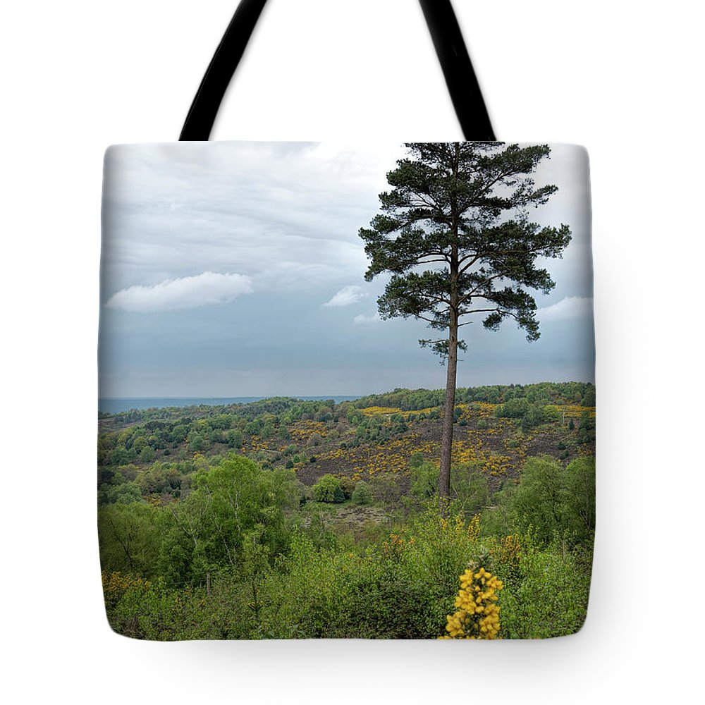 Tree Tote Bag featuring the photograph Lone Tree At Devils Punch Bowl by Michael Hope