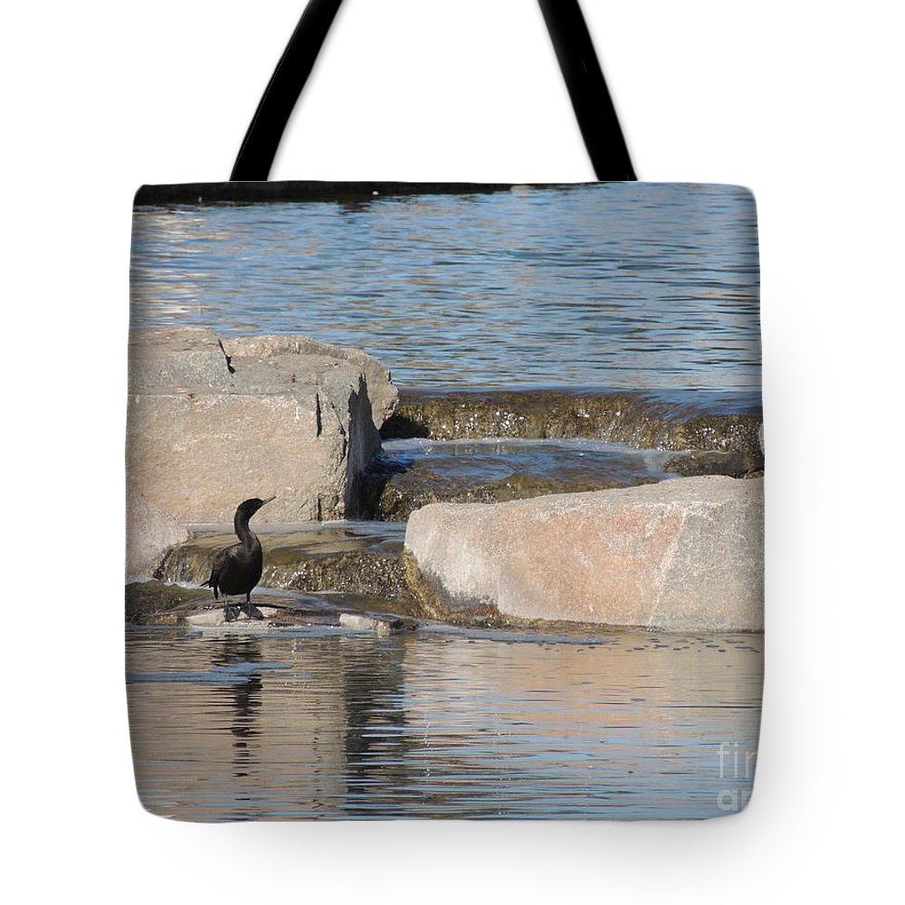 Bird Tote Bag featuring the photograph Lone Waterfowl by Jim Williams Jr