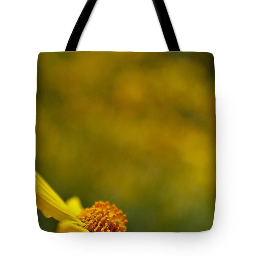 Flower Floral Desert Wildflower Nature Landscape Tote Bag featuring the photograph Lone Wildflower - Yellow by Jill Reger