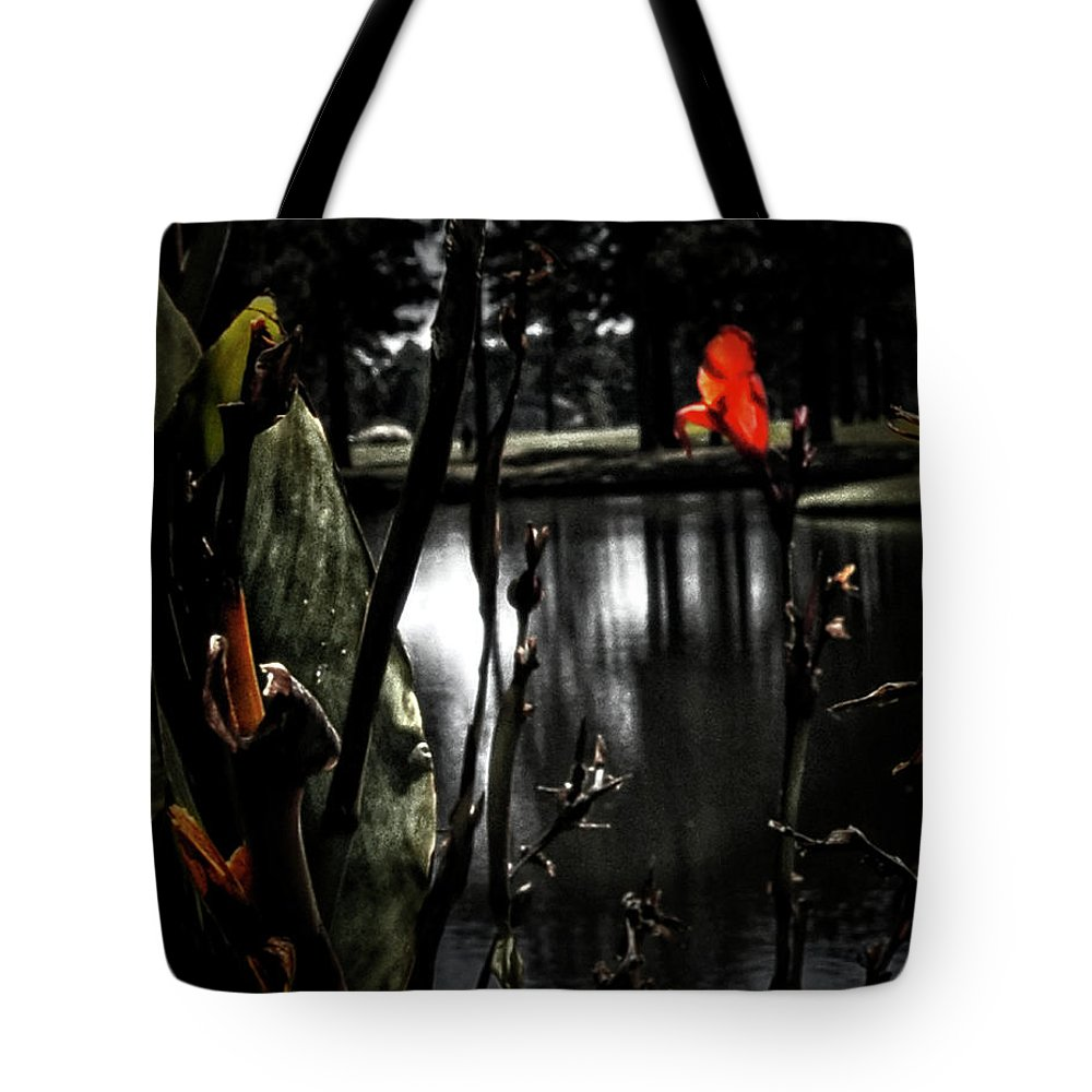 Nature Tote Bag featuring the photograph Loneliness by Gerlinde Keating - Galleria GK Keating Associates Inc