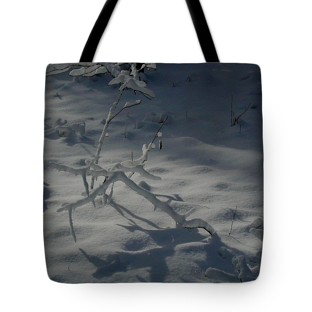 Loneliness Tote Bag featuring the photograph Loneliness In The Cold by Douglas Barnett