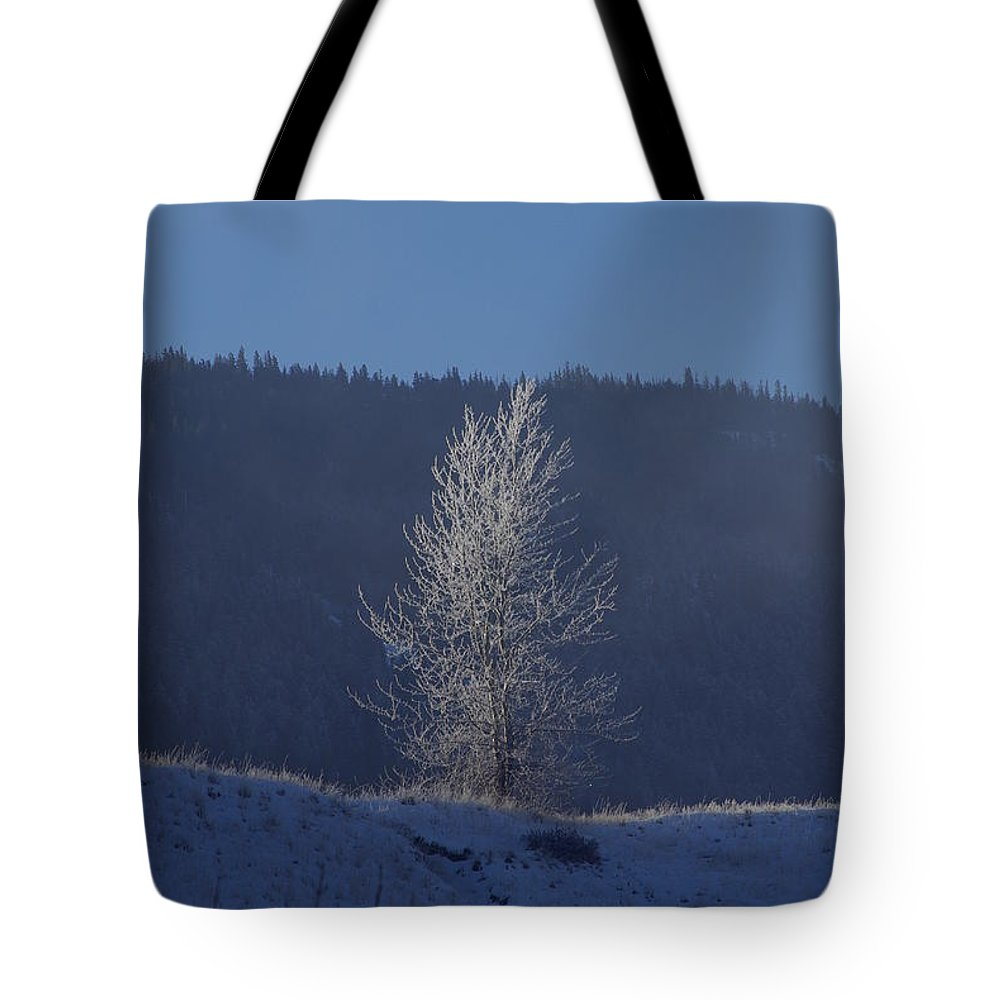 Lonely Tote Bag featuring the photograph Lonely Frosty Tree by Cindy Johnston