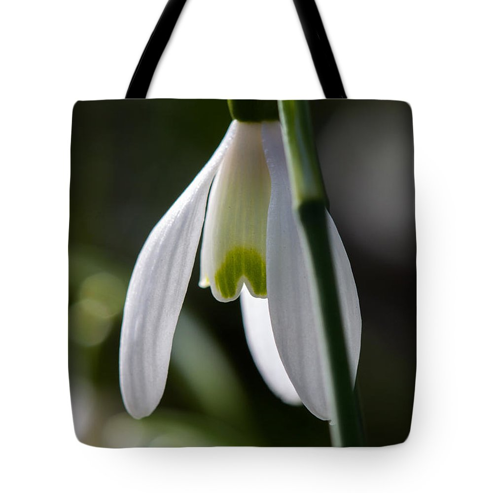 Flower Tote Bag featuring the photograph Lonely by Janneke Aleven