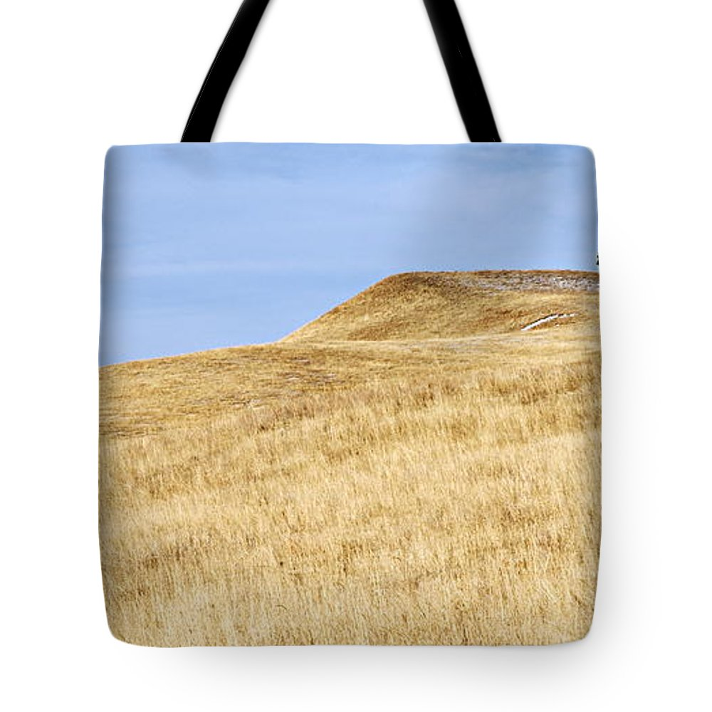 Custer State Park Tote Bag featuring the photograph Lonely Tree by Larry Ricker