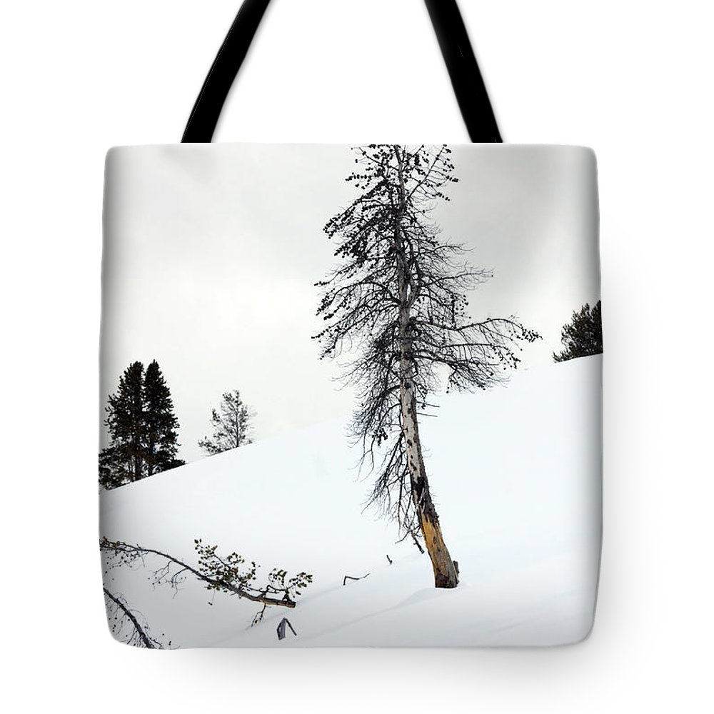 Landscape Tote Bag featuring the photograph Lonely Tree by Mary Haber