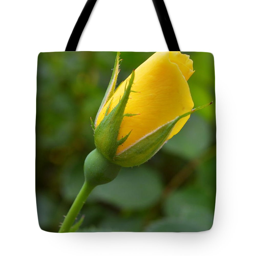 Rose Tote Bag featuring the photograph Lonesome Bud by Linda Covino