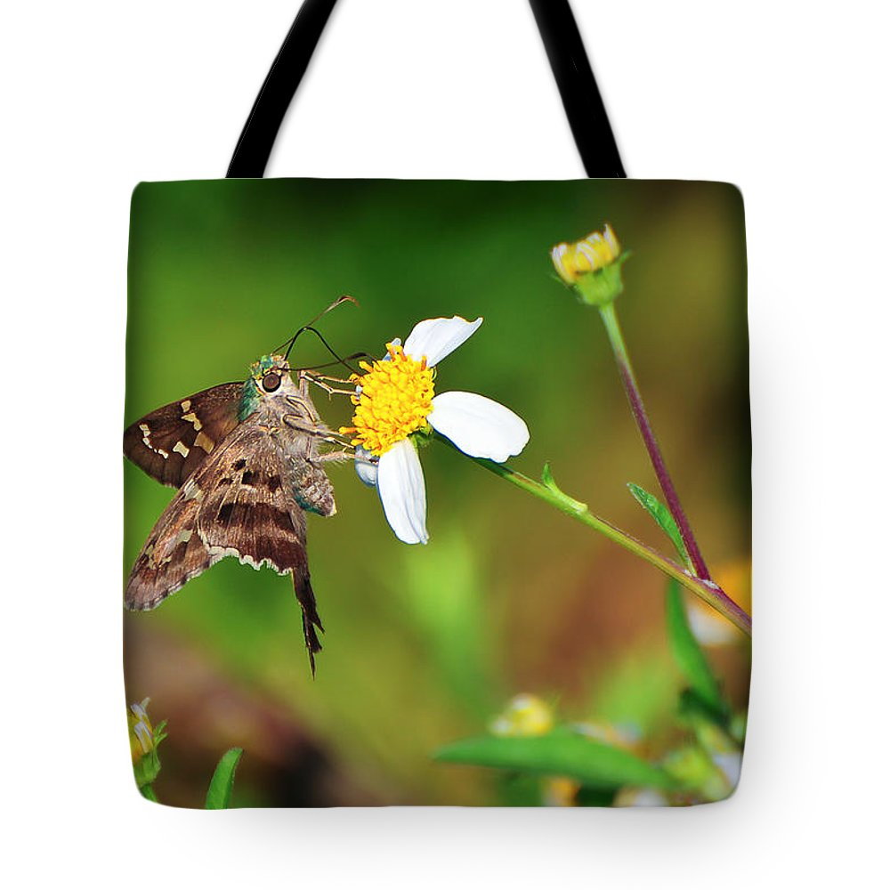 Animal Tote Bag featuring the photograph Long-tailed Skipper Butterfly by Rich Leighton