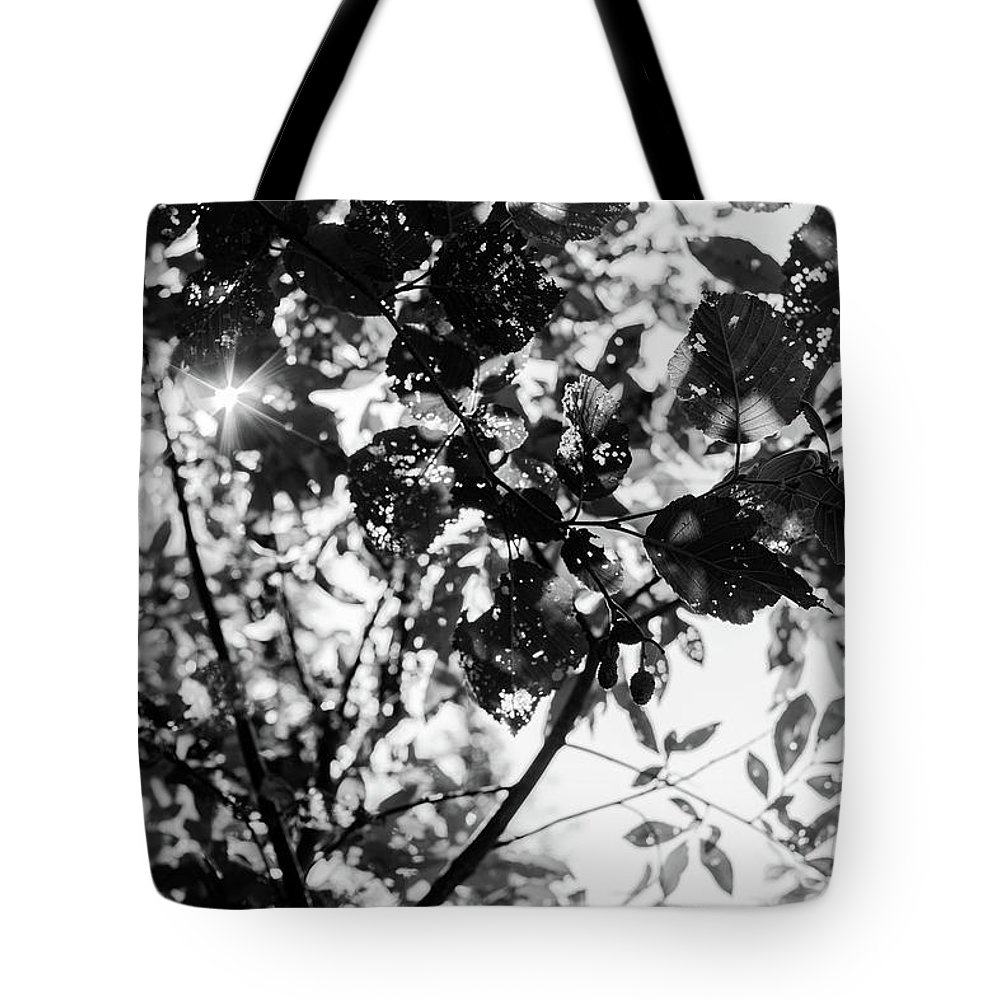 Black And White Tote Bag featuring the photograph Look Up by John Gagnon