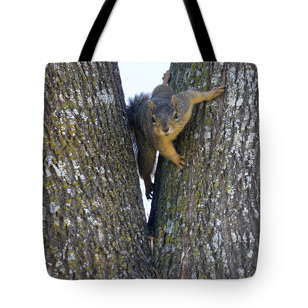 Nature Tote Bag featuring the photograph Looking Back by Lucyna A M Green