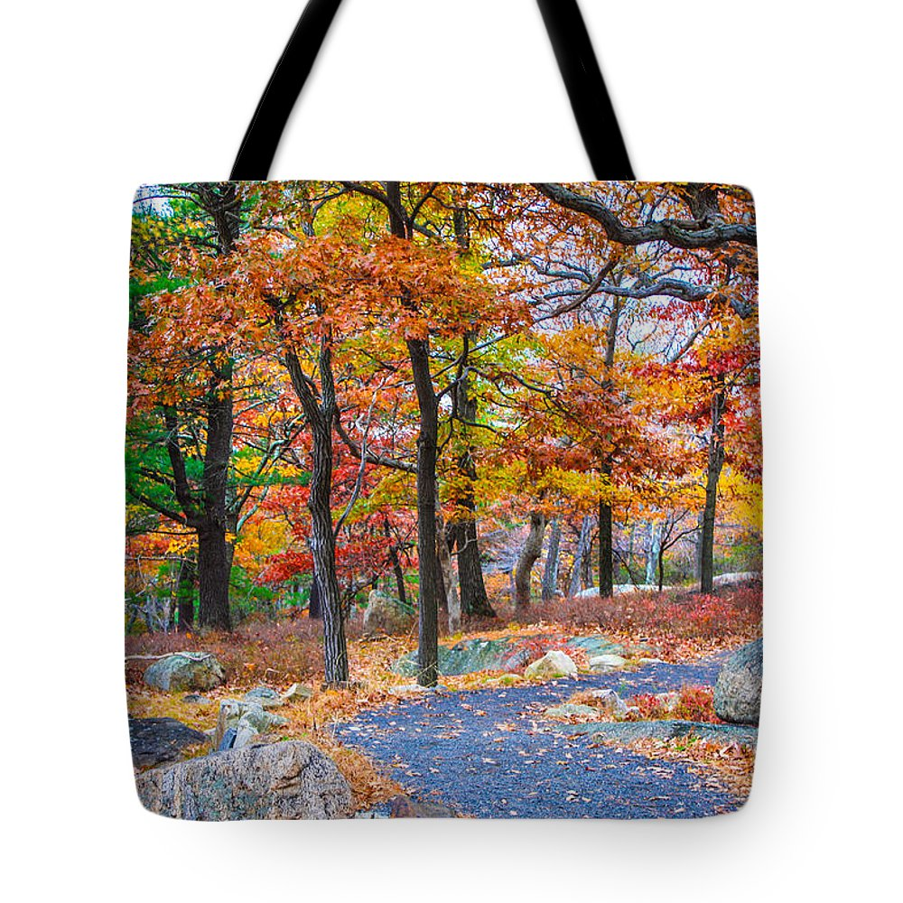 Bear Mountain New York Tote Bag featuring the photograph Looking Down A Trail On Bear Mountain New York by William Rogers