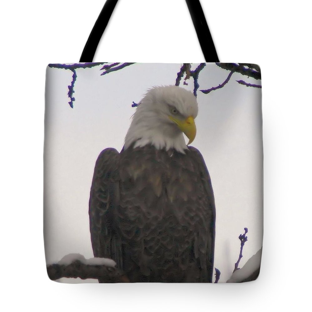 Eagles Tote Bag featuring the photograph Looking Down by Jeff Swan