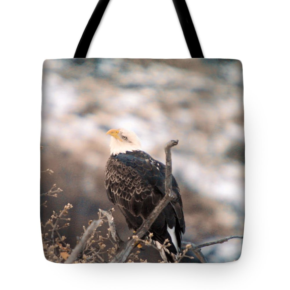 Eagles Tote Bag featuring the photograph Looking Up by Jeff Swan