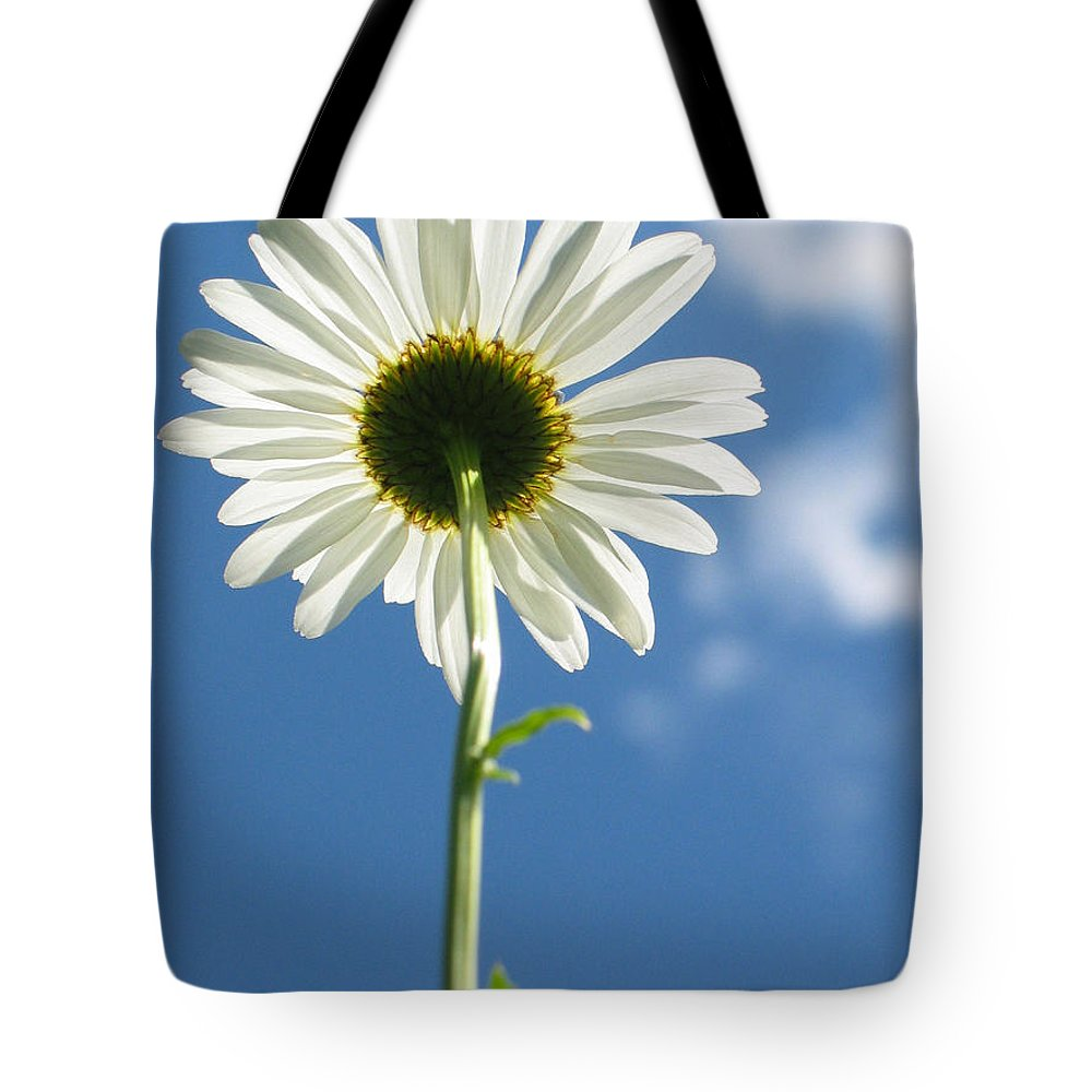 Daisy Tote Bag featuring the photograph Looking Up by Idaho Scenic Images Linda Lantzy