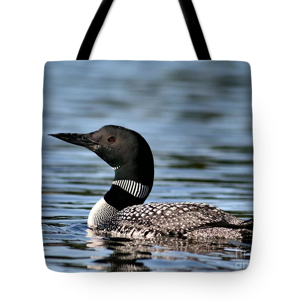 Common Loon Tote Bag featuring the photograph Loon In Blue Waters by Sandra Huston