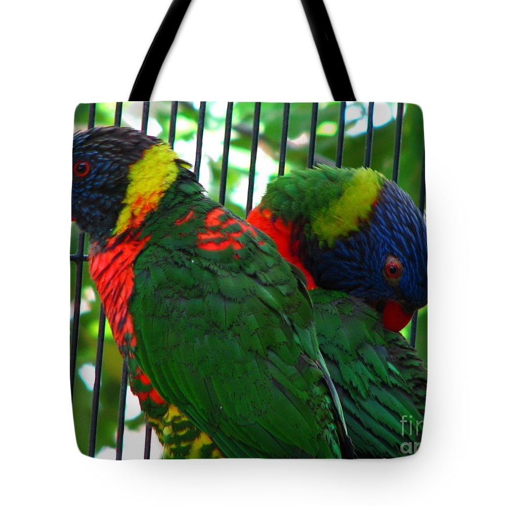 Patzer Tote Bag featuring the photograph Lory by Greg Patzer