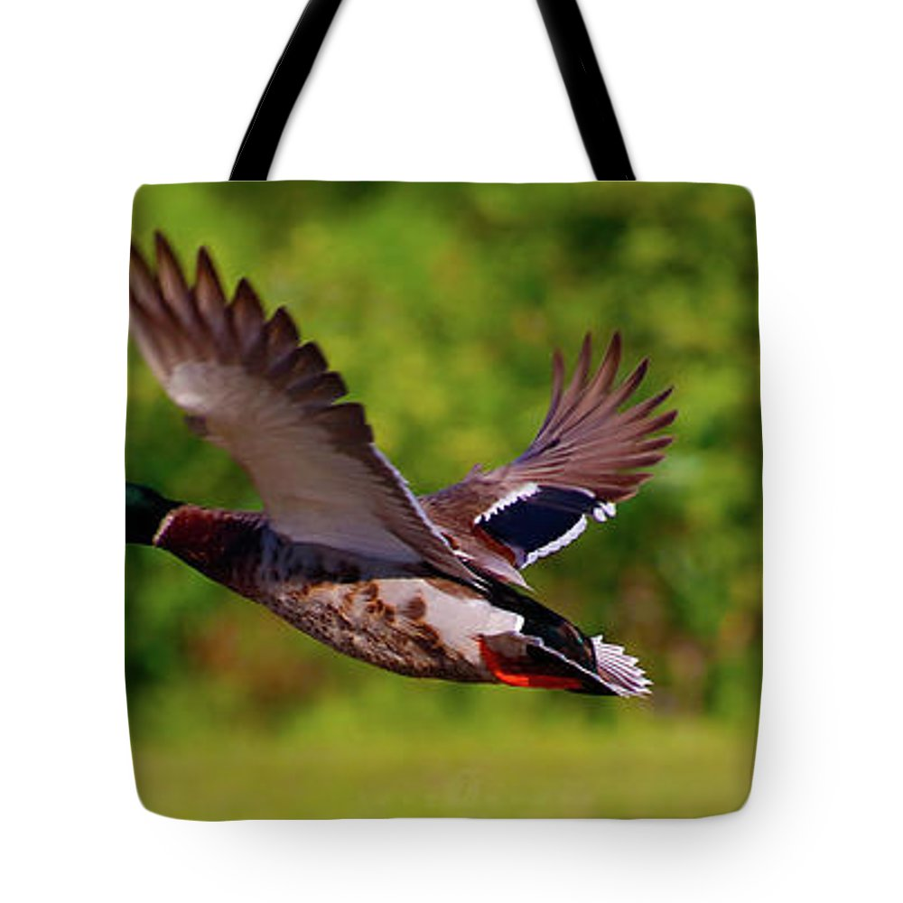 Tote Bag featuring the photograph Close Flyer by Tony Umana