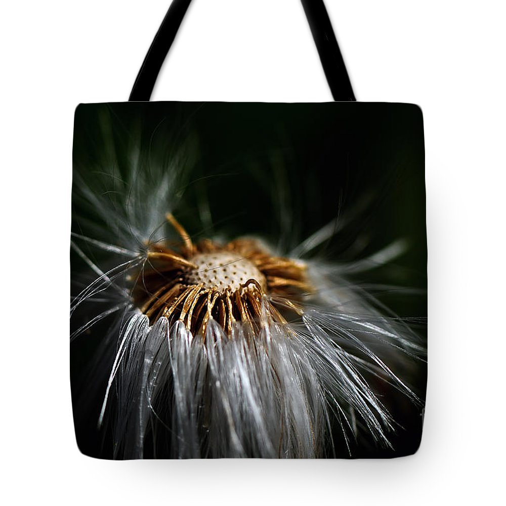 Dandelion Tote Bag featuring the photograph Losing It by Lois Bryan