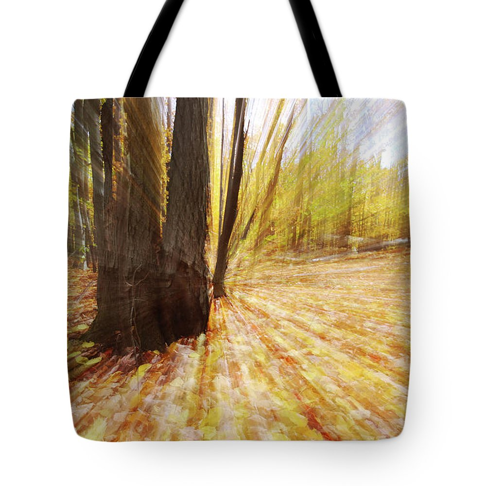 Lost In Time Tote Bag featuring the photograph Lost In Time by Mircea Costina Photography