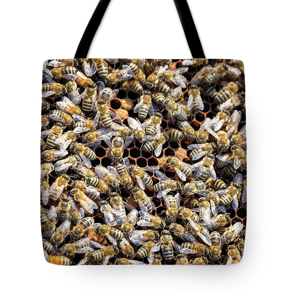Bee Tote Bag featuring the photograph Lots and Lots of Bees by Jess Kraft