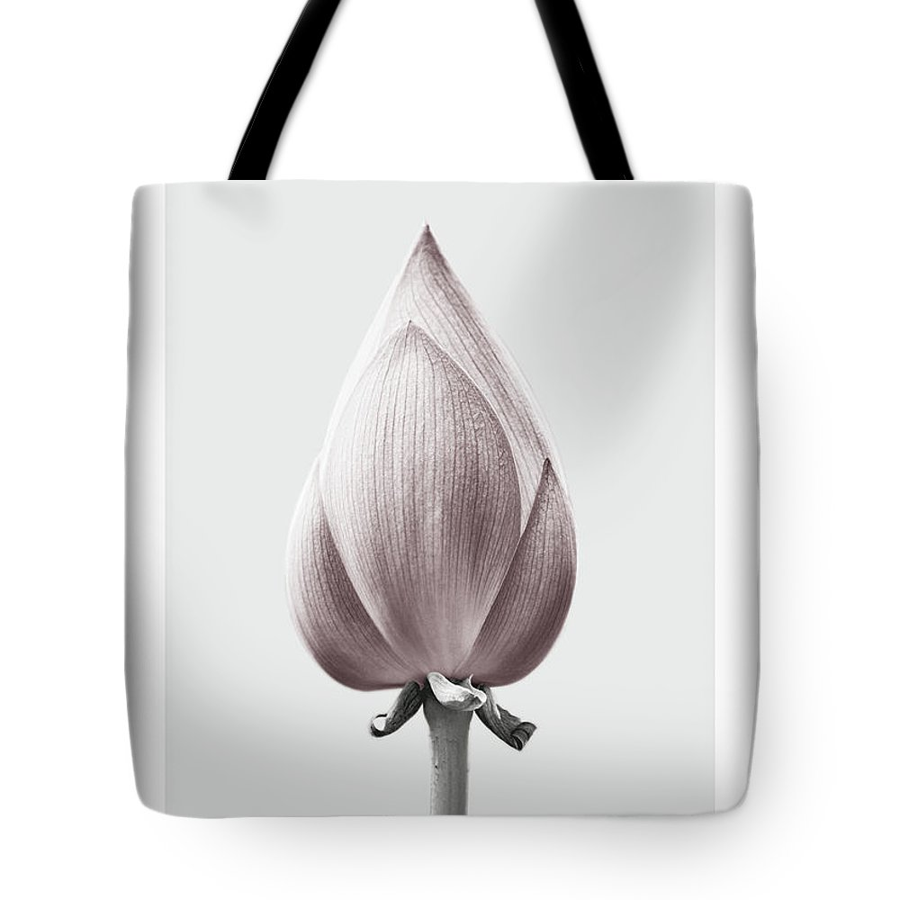 Lotus flower bud tote bag for sale by natalie skywalker lotus tote bag featuring the mixed media lotus flower bud by natalie skywalker izmirmasajfo
