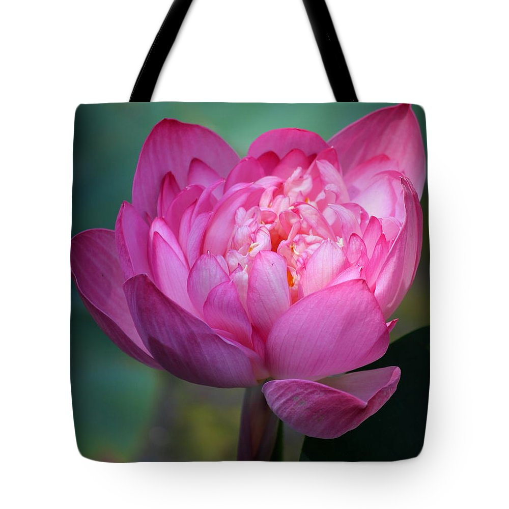 Tote Bag featuring the photograph Lotus by Nikky Nish