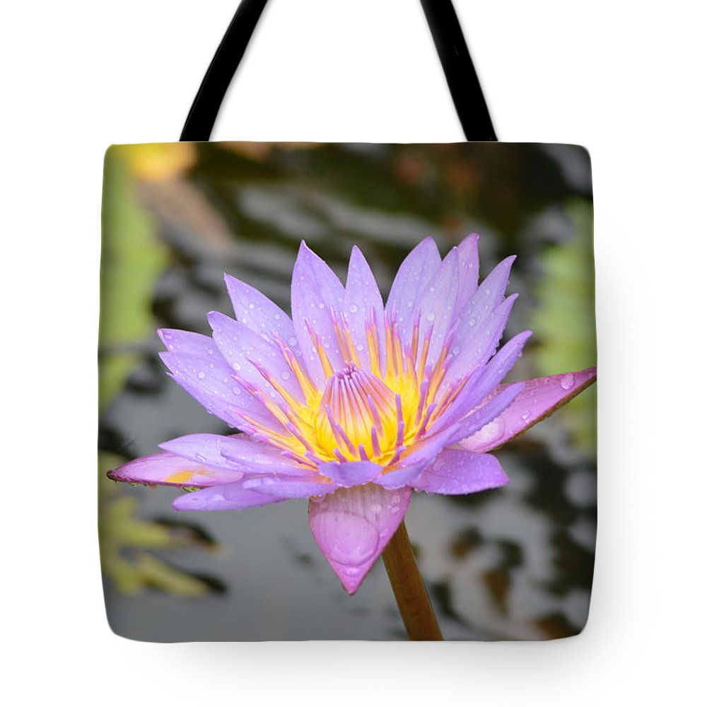 Morning Shine Tote Bag featuring the photograph Lotus by Sainuddeen Alanthi