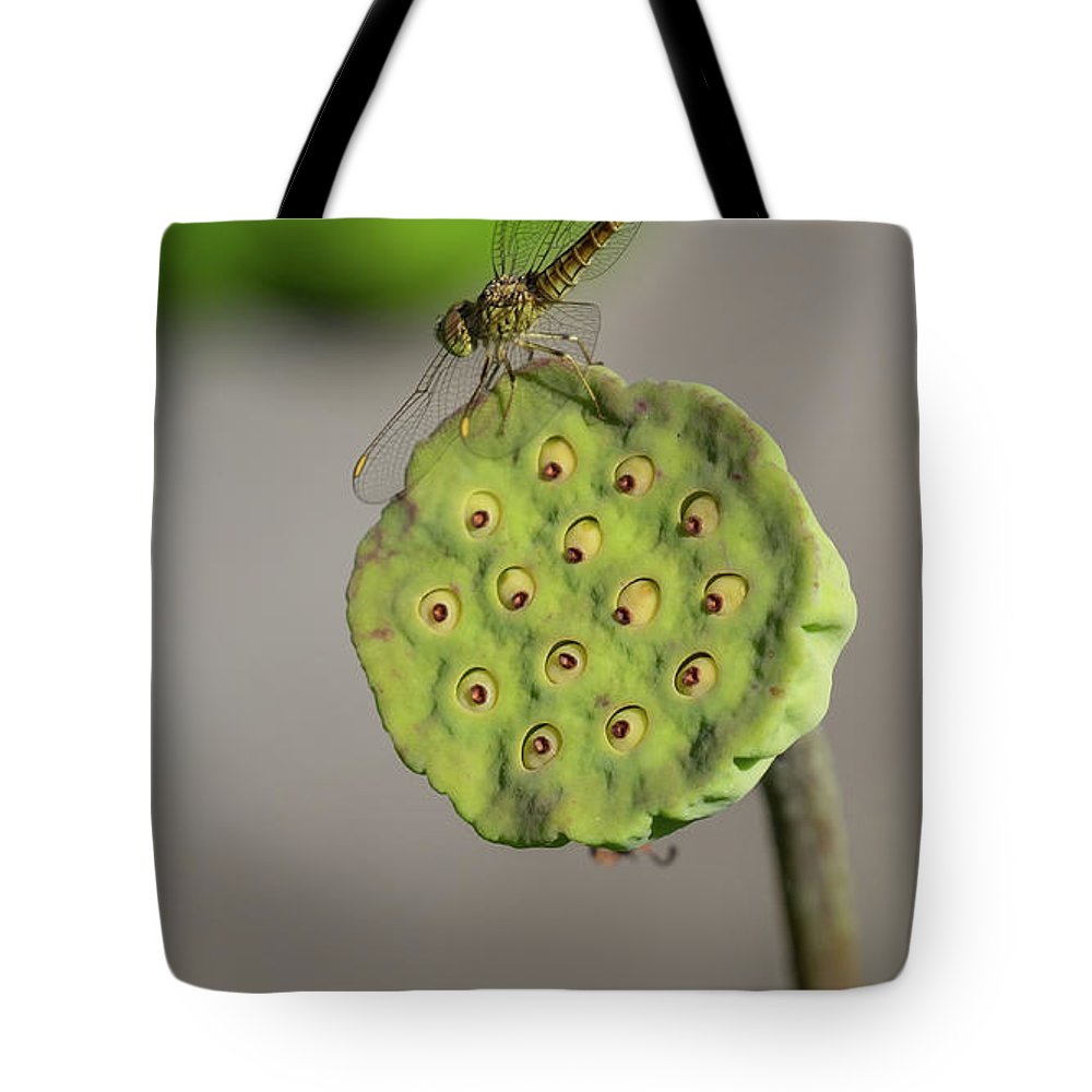 Lotus Tote Bag featuring the photograph Lotus Seeds by Que Siam