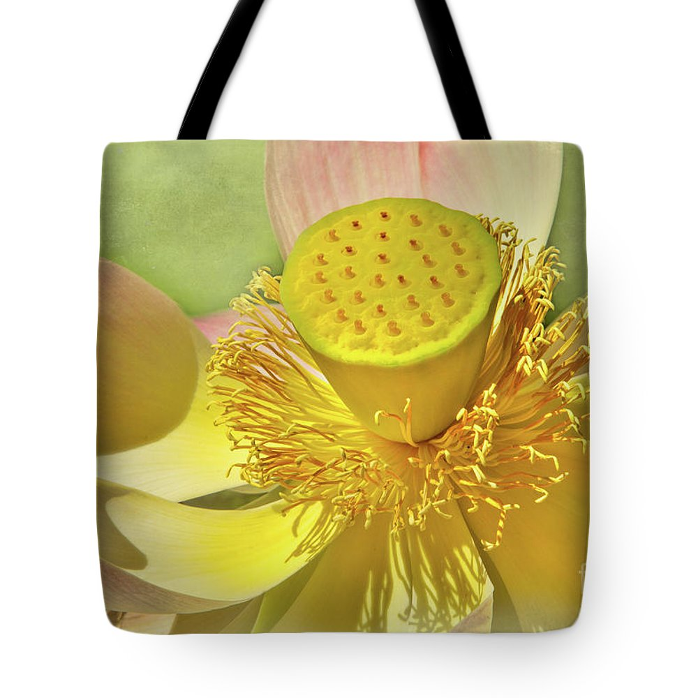 Cactus Tote Bag featuring the photograph Lotusland Lotus by Marilyn Cornwell