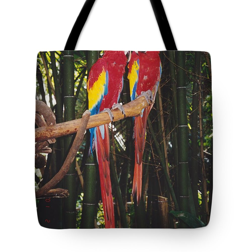 Birds Tote Bag featuring the photograph Love Birds by Michelle Powell
