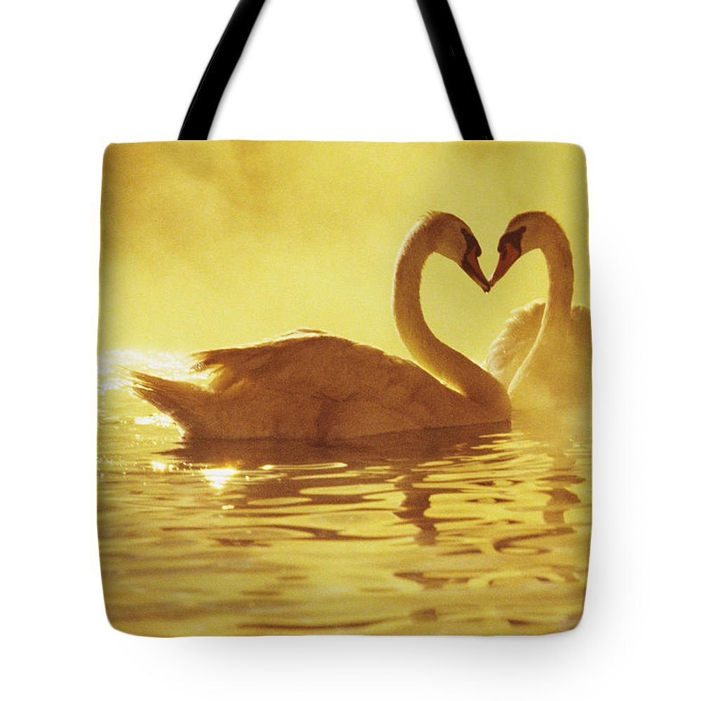 African Tote Bag featuring the photograph Love Swans by Brent Black - Printscapes