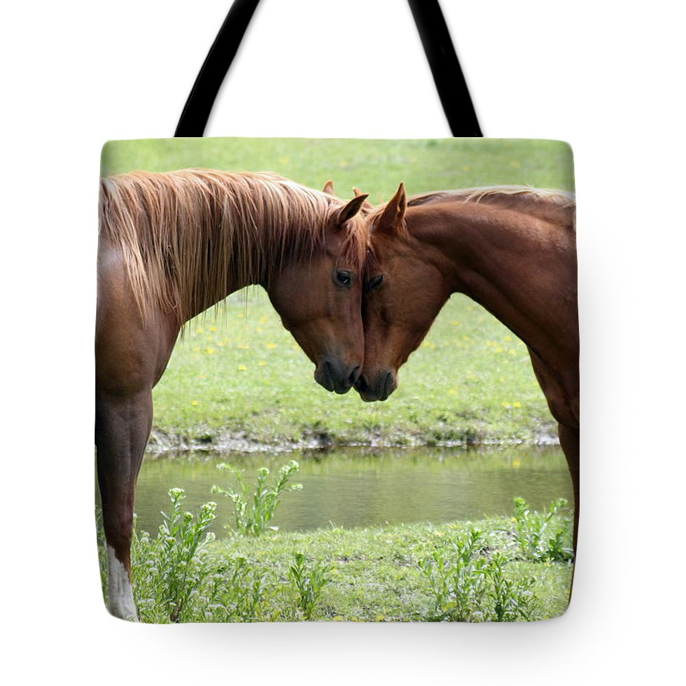 Horses Tote Bag featuring the photograph Love by Tiffany Vest