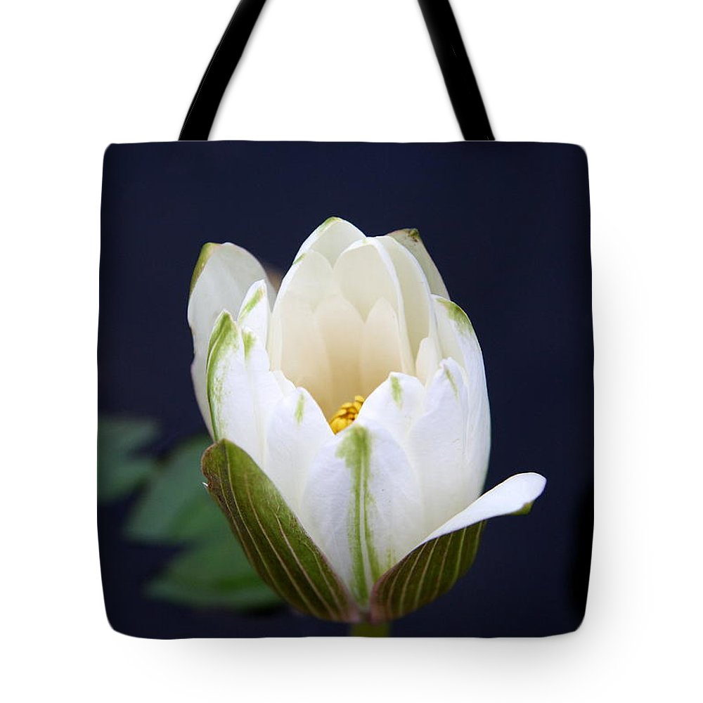 Waterliy Tote Bag featuring the photograph Loveliness by Christiane Schulze Art And Photography