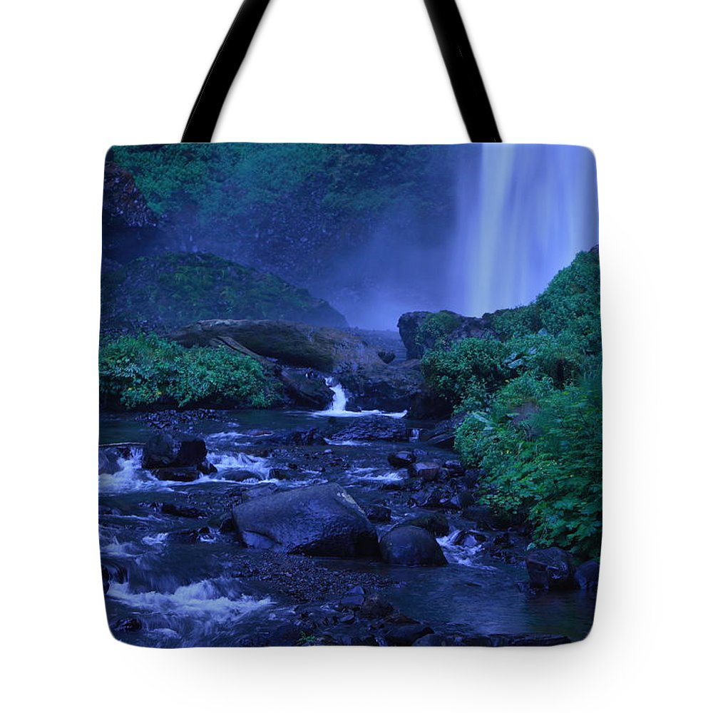 Latourell Falls Tote Bag featuring the photograph Lovely Latourell Falls by Teresa Herlinger