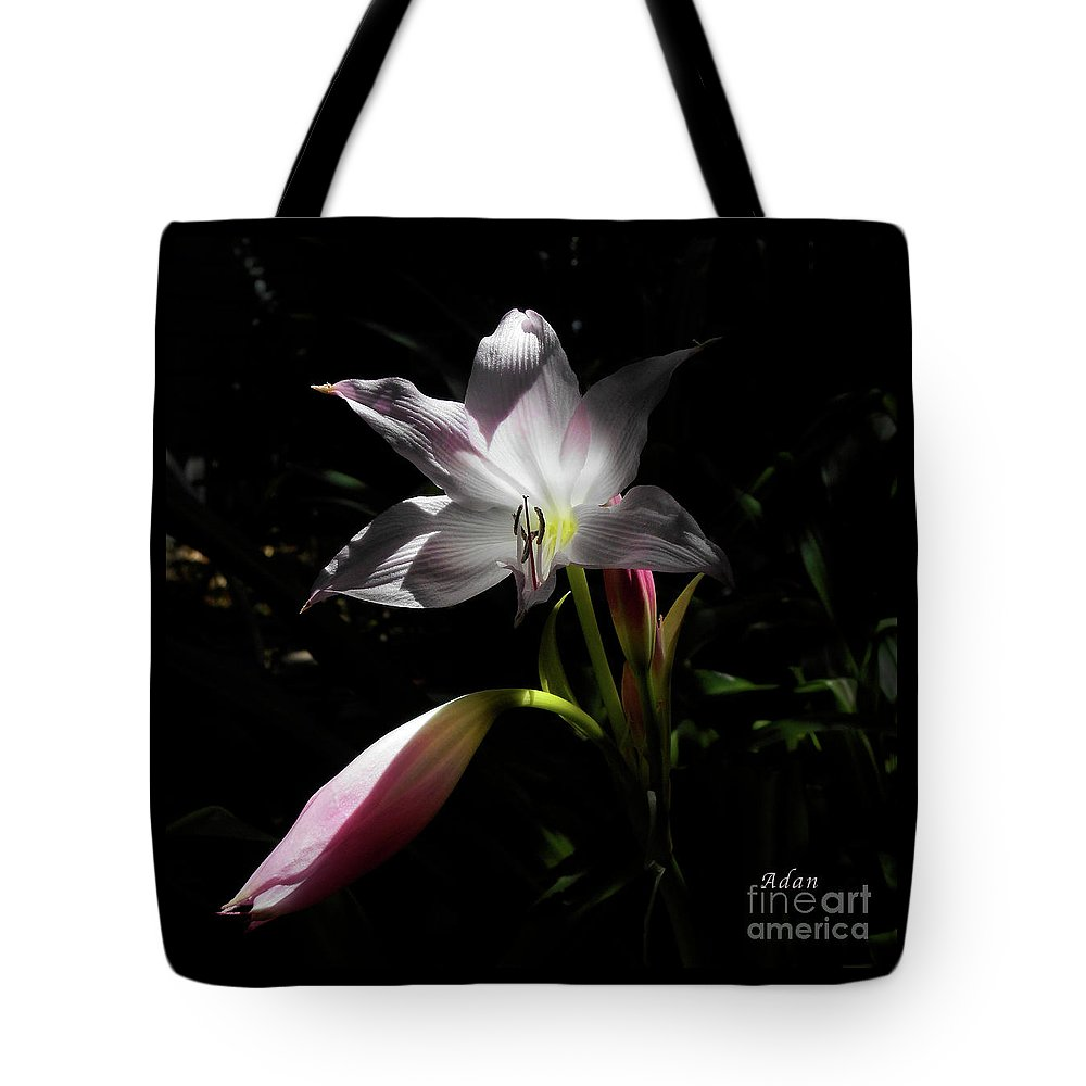 Lily Series Tote Bag featuring the photograph Lovely Lilies Partners by Felipe Adan Lerma