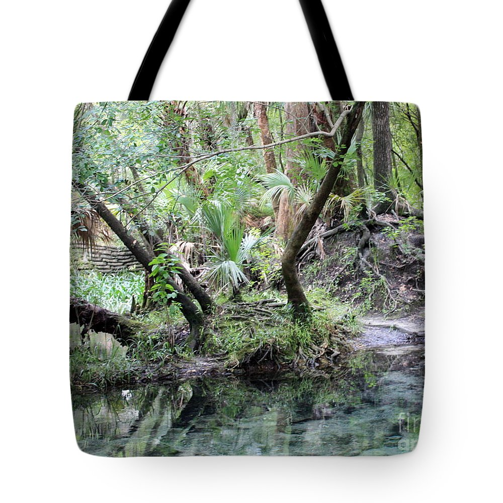 Landscape Tote Bag featuring the photograph Lovely Lithia Springs by Carol Groenen