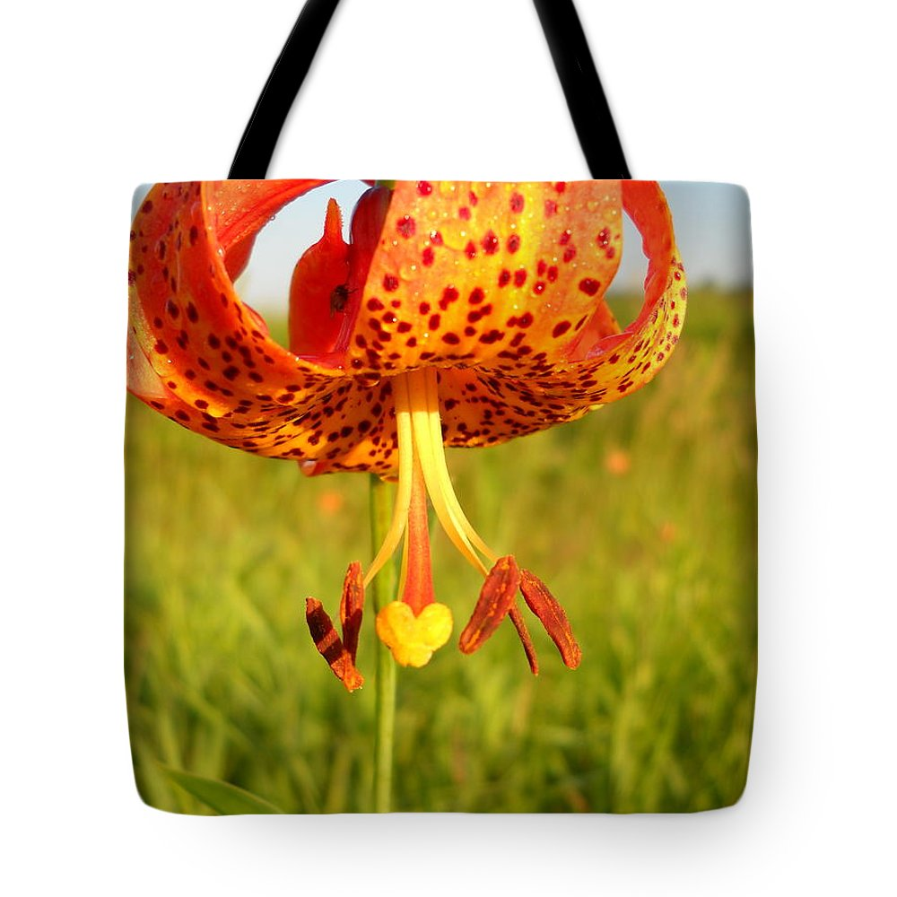 Floral Tote Bag featuring the photograph Lovely Orange Spotted Tiger Lily by Kent Lorentzen