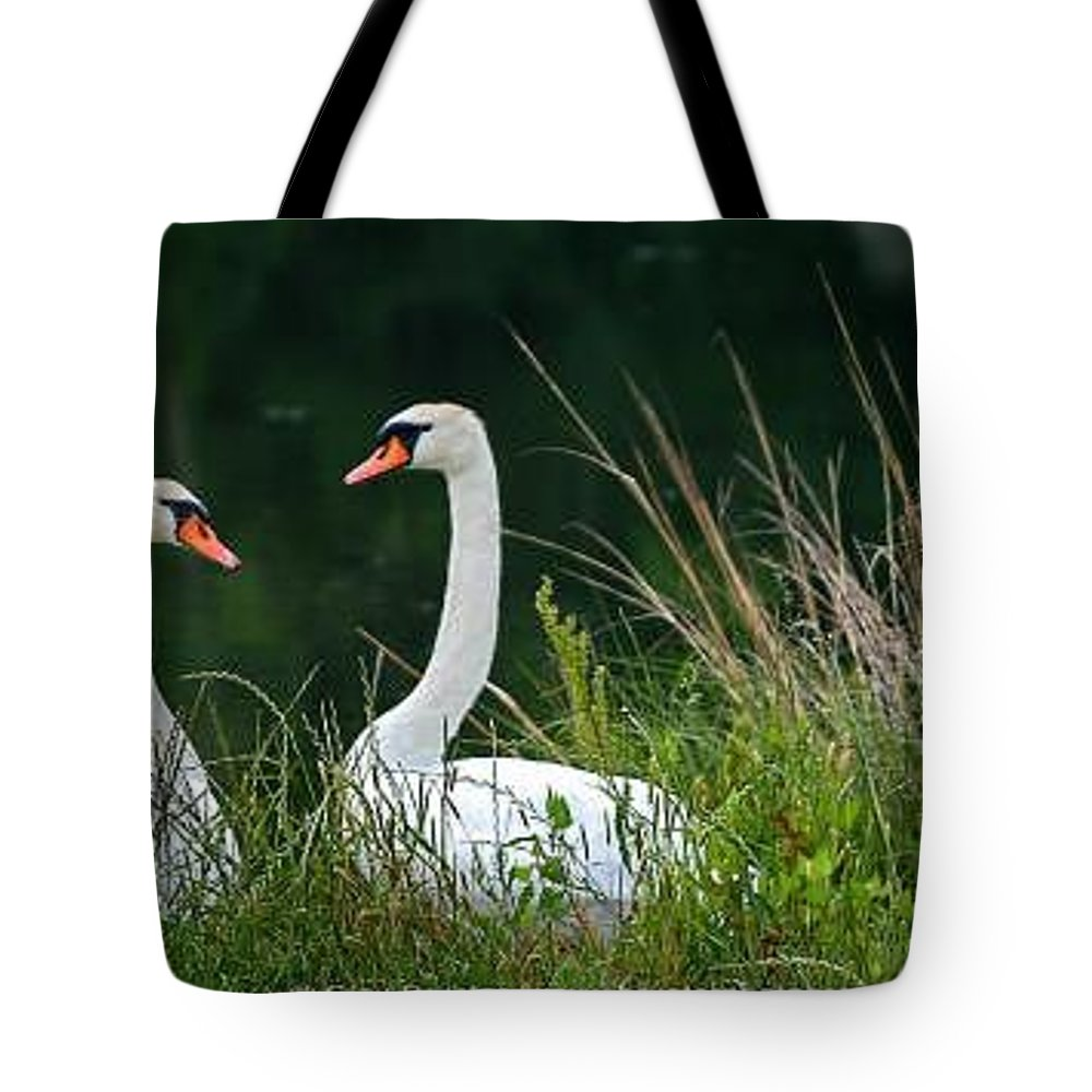 Clay Tote Bag featuring the photograph Loving Swans by Clayton Bruster
