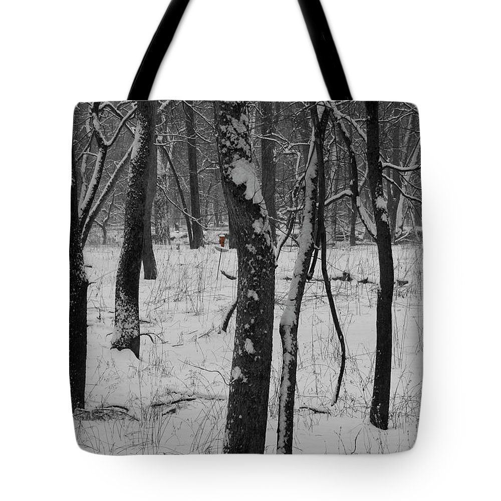Snow Tote Bag featuring the photograph Lowland Winter by Dylan Punke
