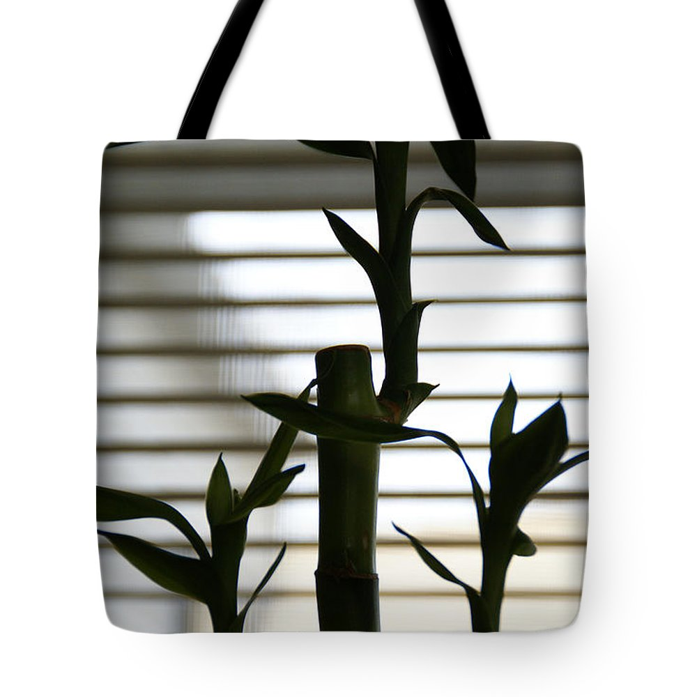Lucky Bamboo Tote Bag featuring the photograph Lucky Bamboo by Linda Shafer