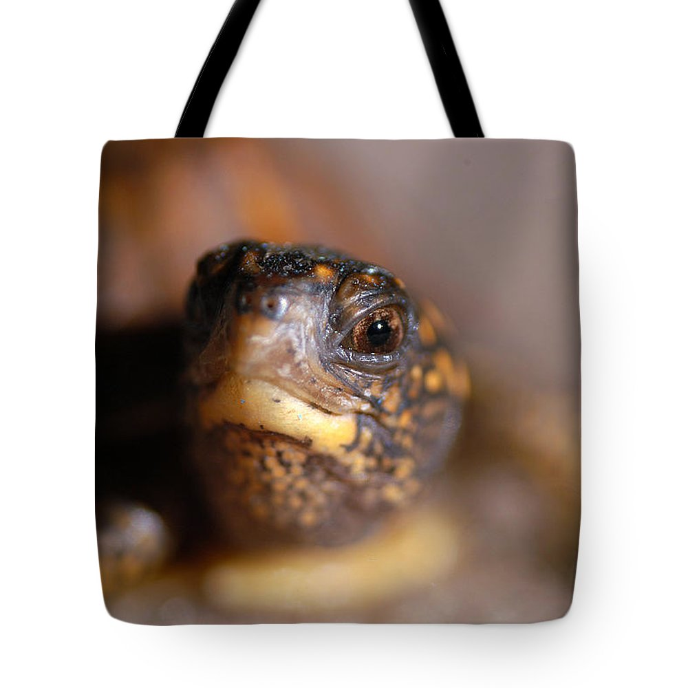 Clay Tote Bag featuring the photograph Lucky by Clayton Bruster