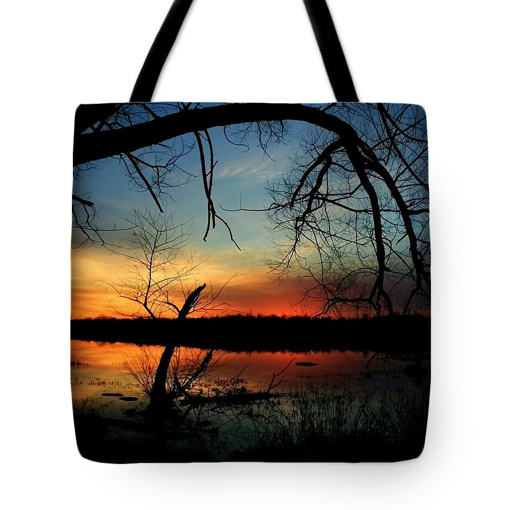 Landscape Tote Bag featuring the photograph Luminous Essence by Mitch Cat