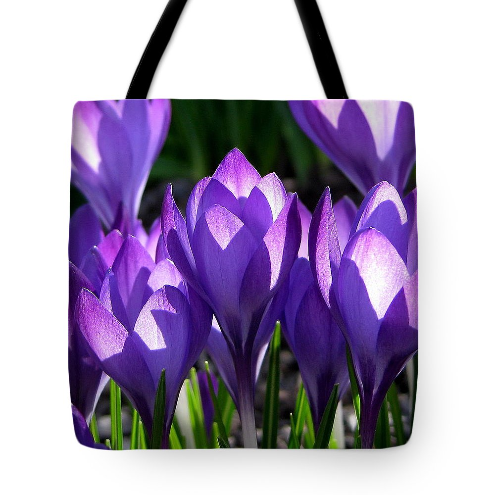 Crocus Tote Bag featuring the photograph Luminous Floral Geometry by Byron Varvarigos