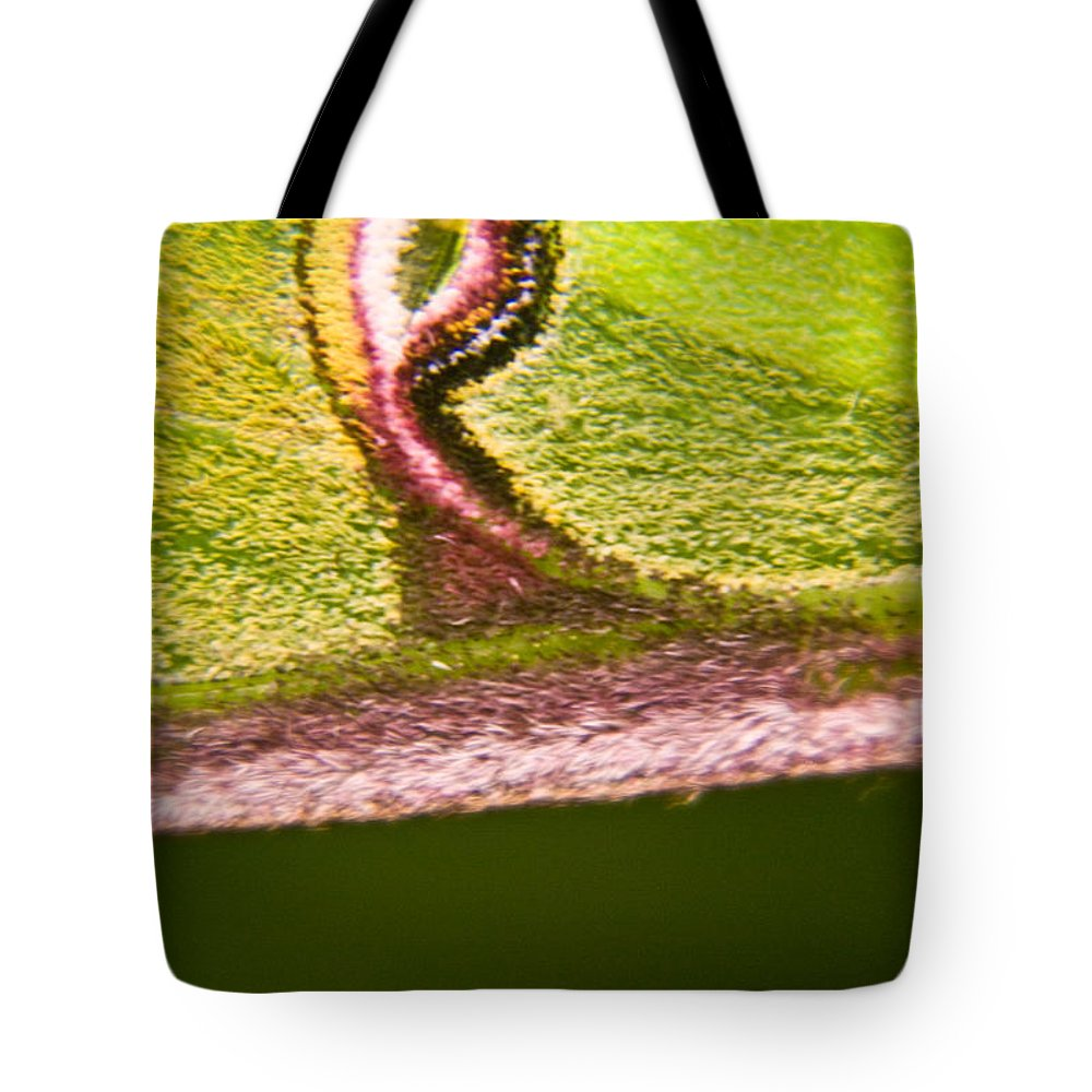 Luna Tote Bag featuring the photograph Luna Moth Eye by Douglas Barnett