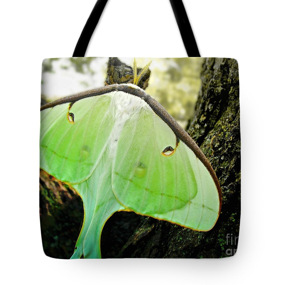 Macro Tote Bag featuring the photograph Luna Moth No. 3 by Todd Blanchard