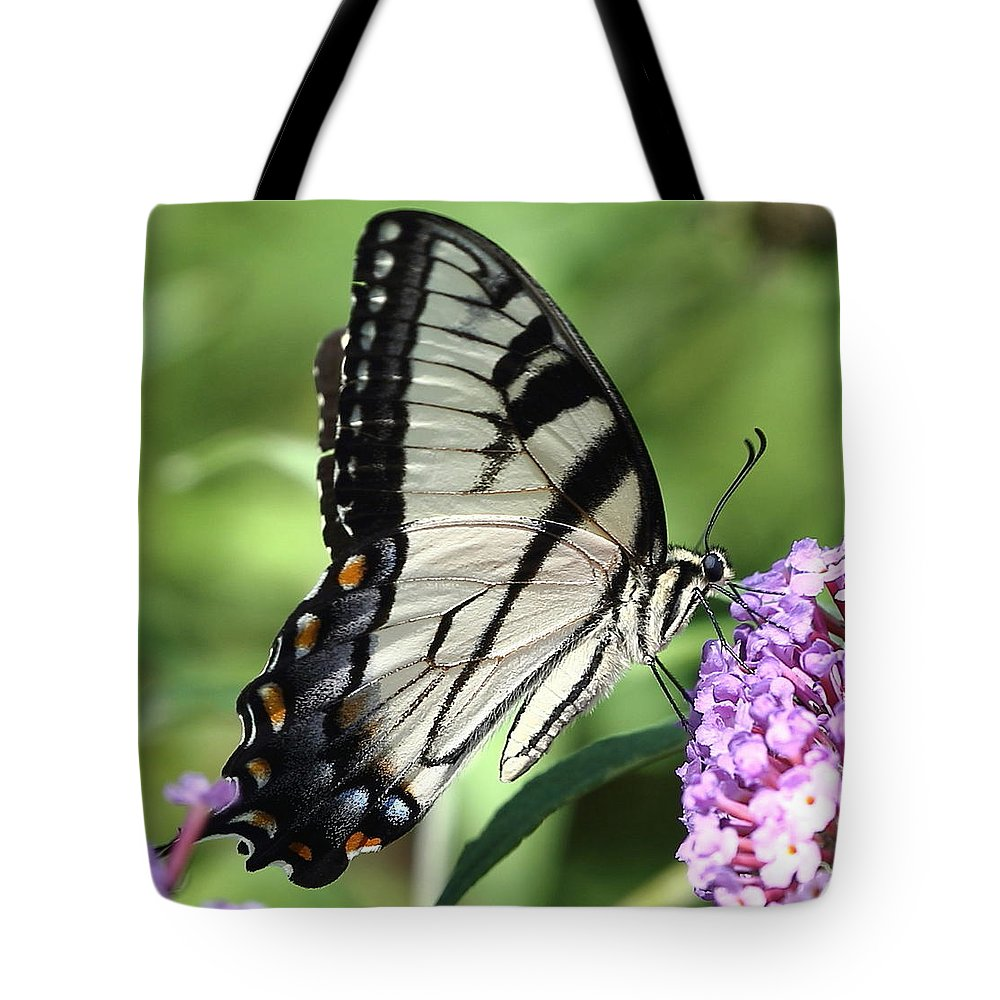 Nature Tote Bag featuring the photograph Lunch by David Rosenthal