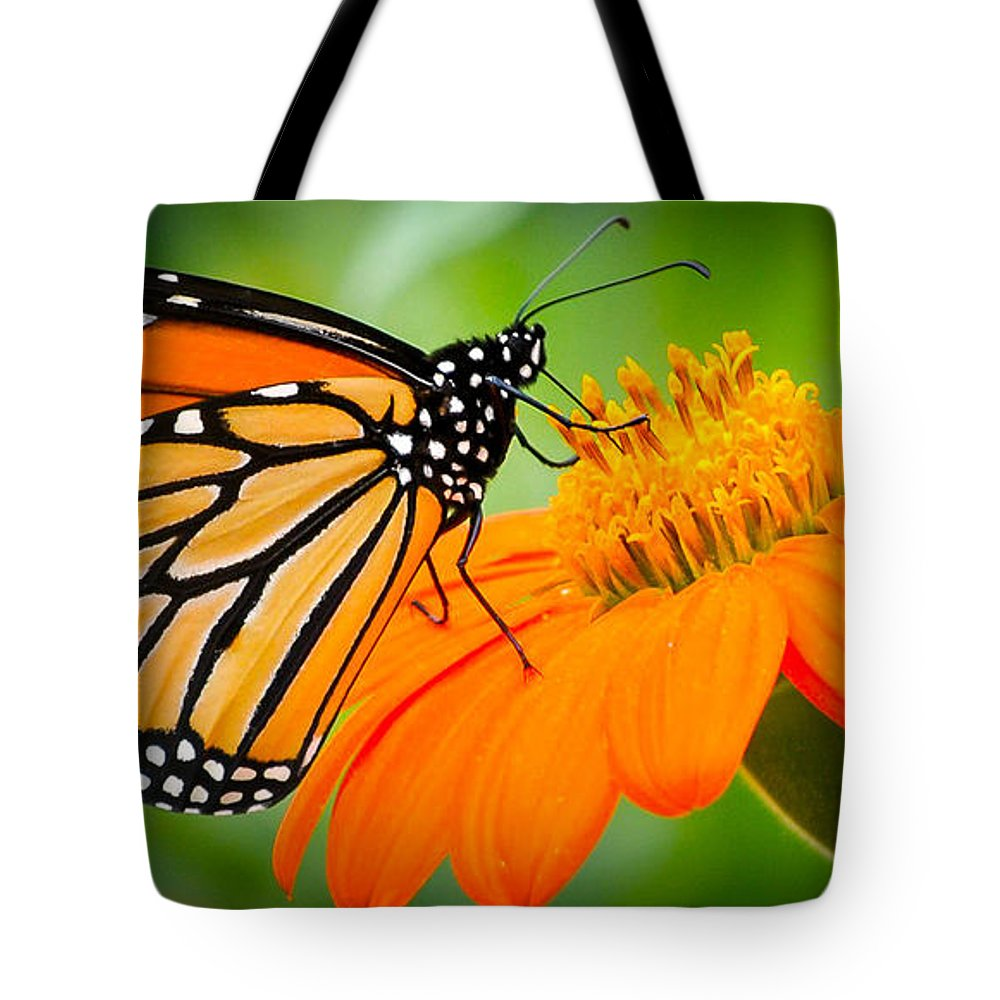 Butterfly Tote Bag featuring the photograph Lunch by Heather Hubbard