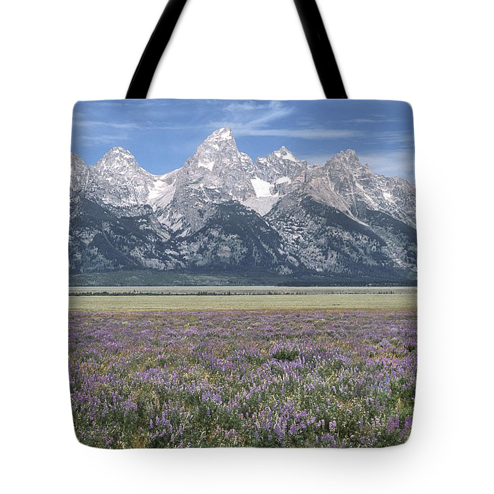 Grand Teton Tote Bag featuring the photograph Lupine And Grand Tetons by Sandra Bronstein